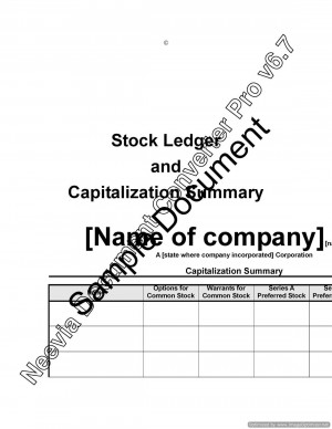 Stock Ledger and Capitalization Summary